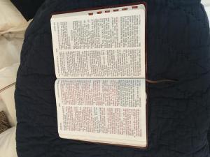 TYJ BIBLE